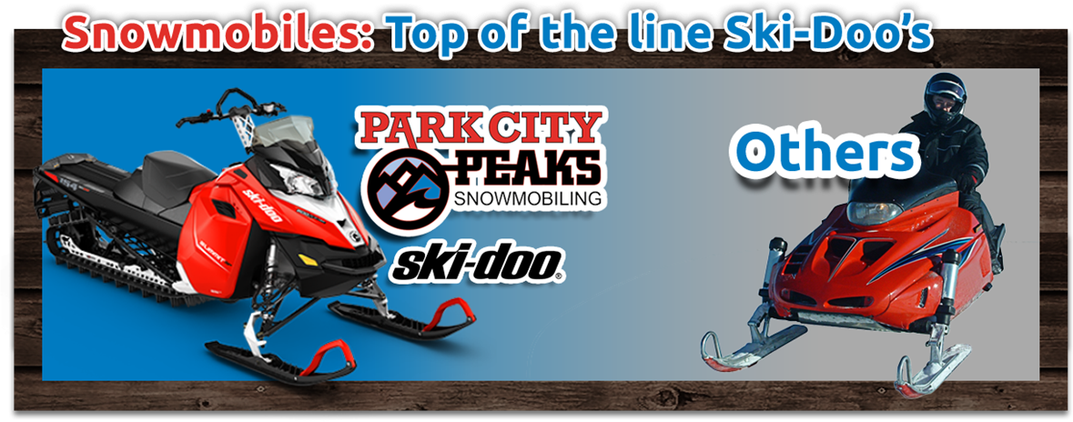 Top of line snowmobiles